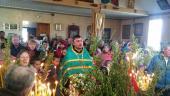 Молитва за мир в Україні лунала в селі Несолонь