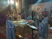 Перебування Святогірської ікони Божої Матері в Житомирі: нічна літургія у кафедральному соборі!